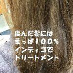 その素晴らしさの虜になる 傷んだ髪に 葉っぱ100% インディゴトリートメント