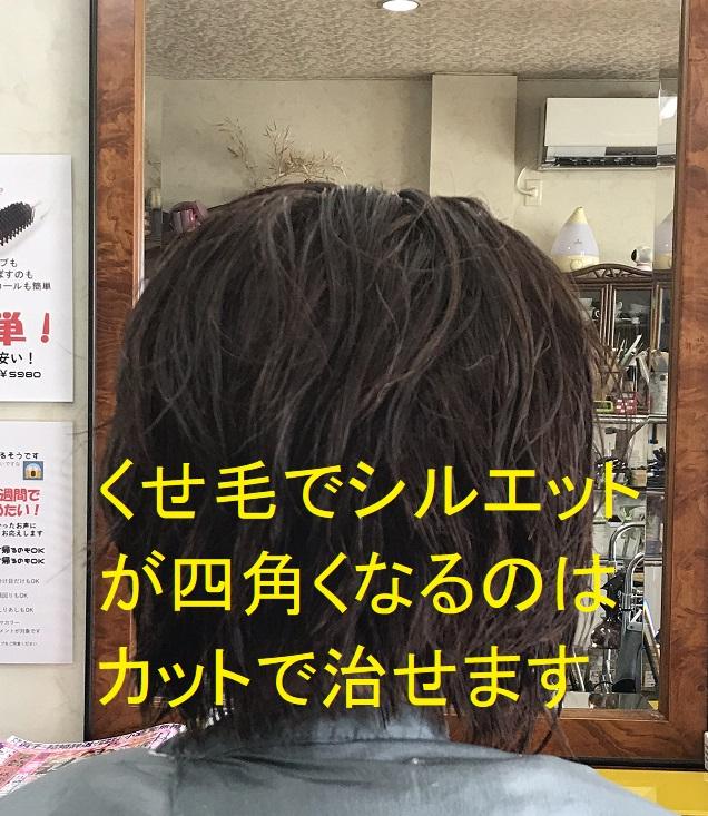 くせ毛でシルエットが四角くなるのはカットで治せます