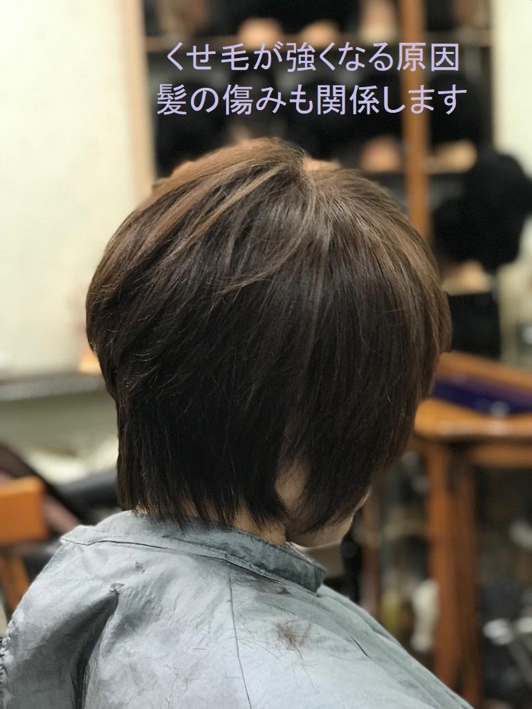 特許 明るい白髪染め「イチゴカラー」は くせ毛を助長しません