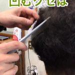 骨格の凸凹は 毛流やら くせ毛やらに連動する
