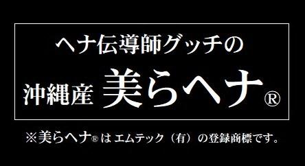 高級トリートメントと安物の違い的感覚談 美らヘナ®レポート 四国初上陸(多分)