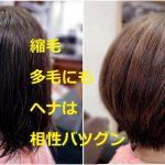 #最高のトリートメント #ヘナ #くせ毛 #縮毛 #バサバサした髪質 #多毛 #髪質改善